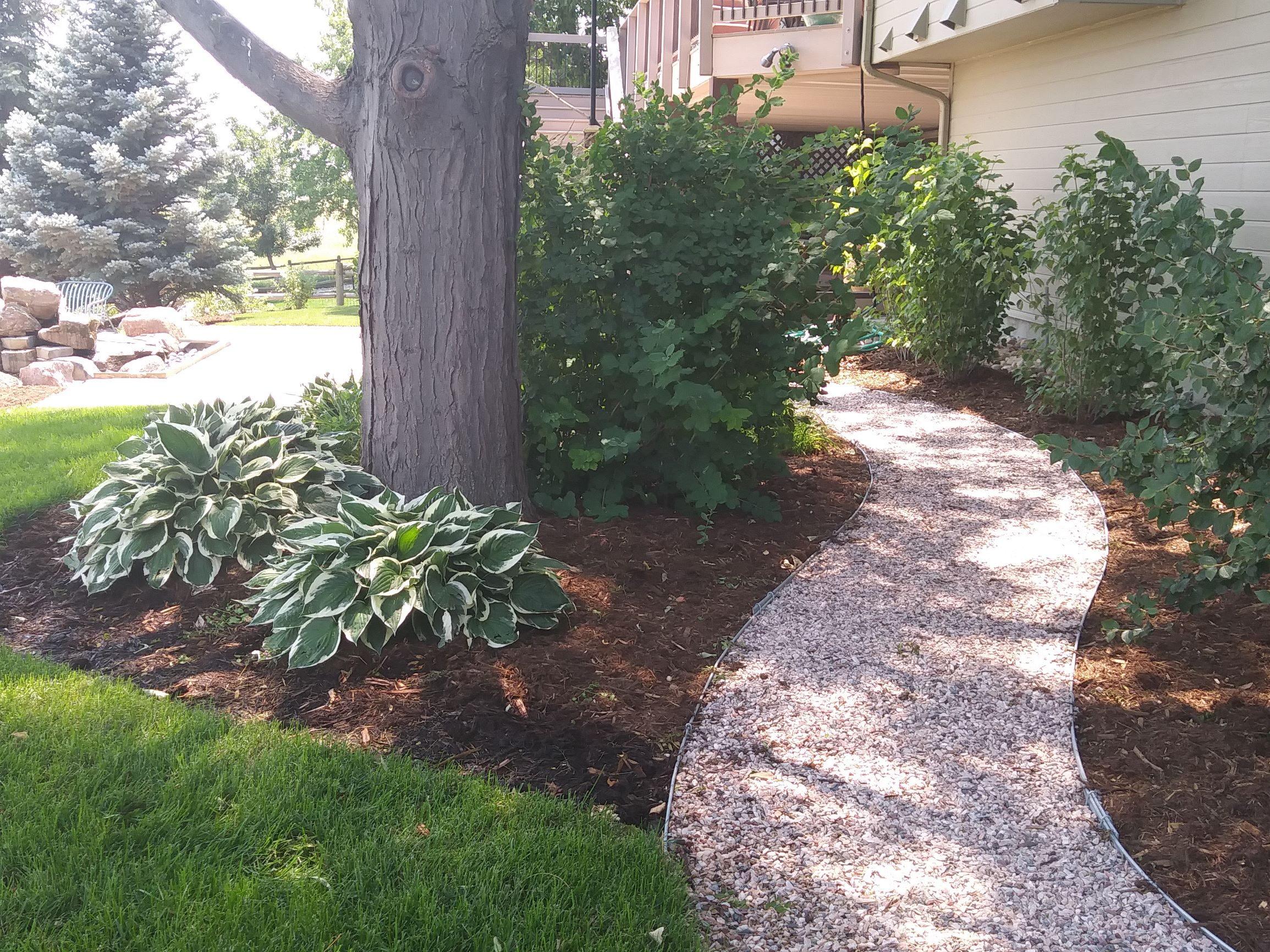 Gravel path winding between trees and bushes bordered with mulch and plants.
