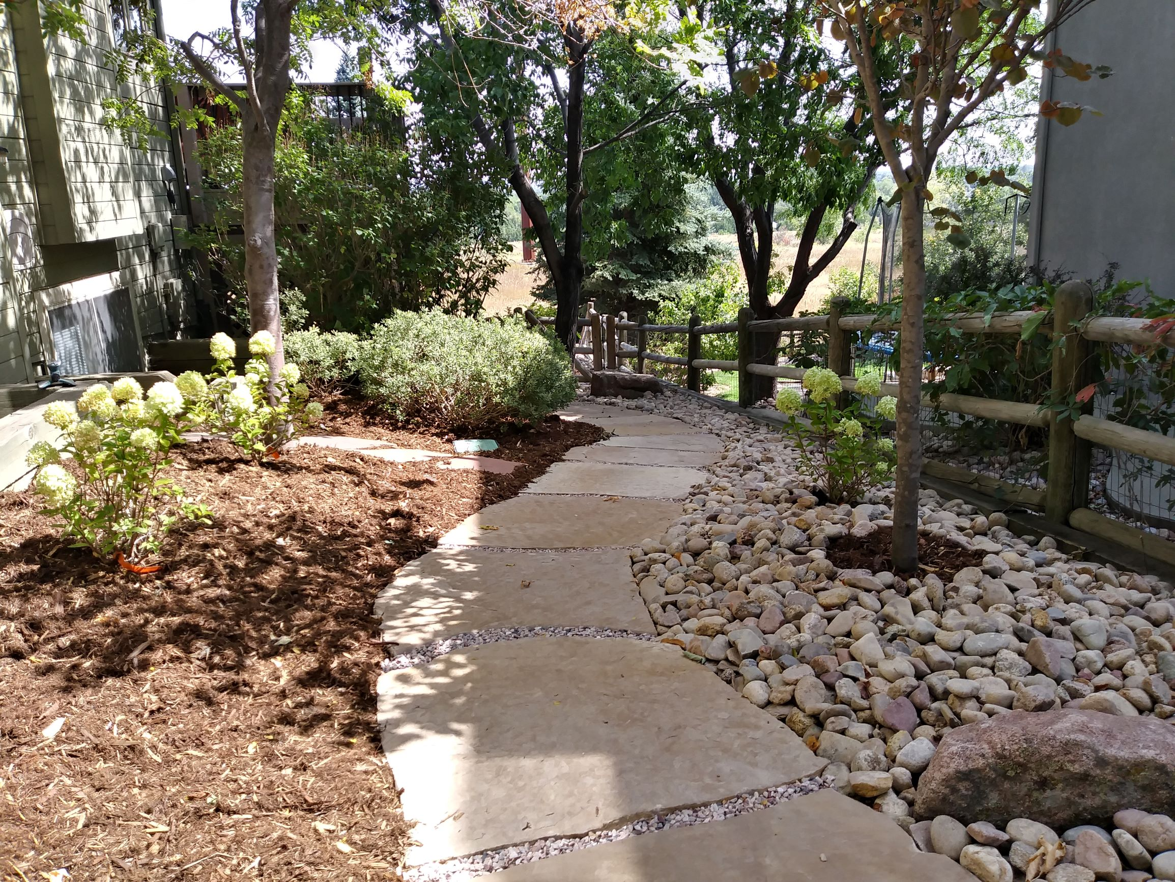 Stepping stone path with mulch and rock bordering its length.