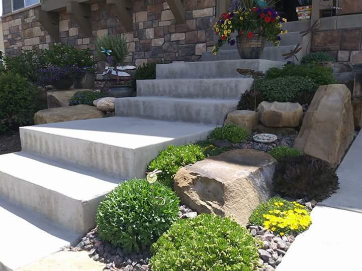 Concrete steps bordered by large decorative rocks with low maintenance plants.
